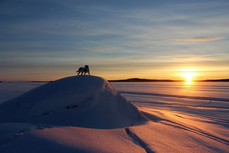 Light of Dawn_Lapland_Kiviluoma52
