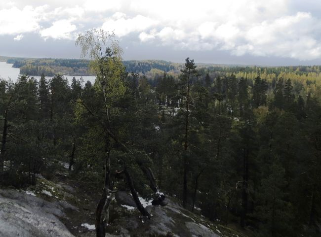 23rd Experience: Nuuksio National Park, A taste of Lapland in a city!